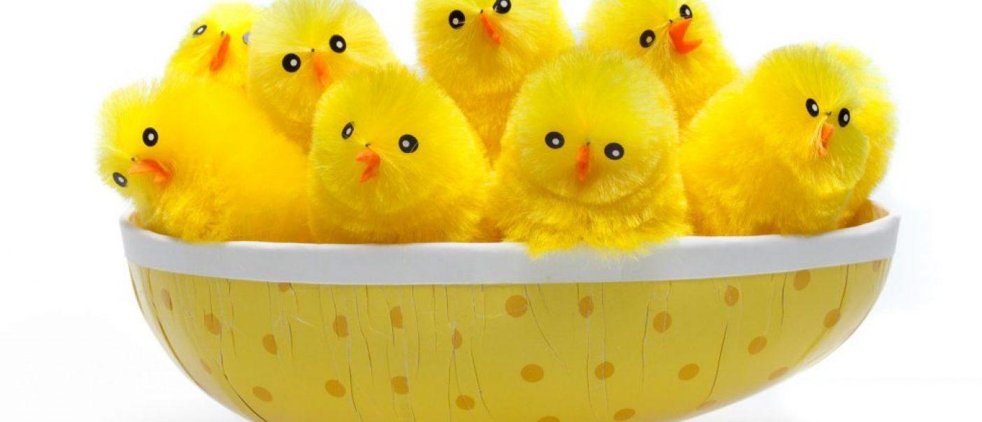 Glad påskkycklingar