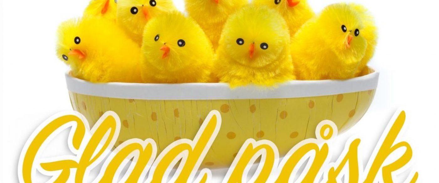 """Gula kycklingar i påskägg och text """"glad påsk""""."""