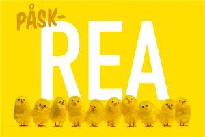 Påskkycklingar twittrar om påskrea.